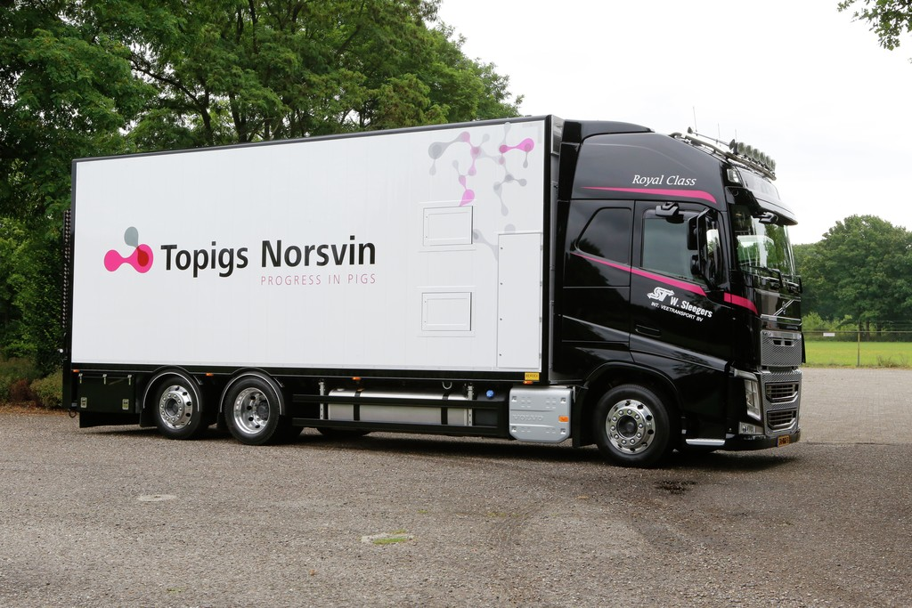 A Topigs Norsvin ASP+ állatok szállítását lehetővé tévő kamionja.
