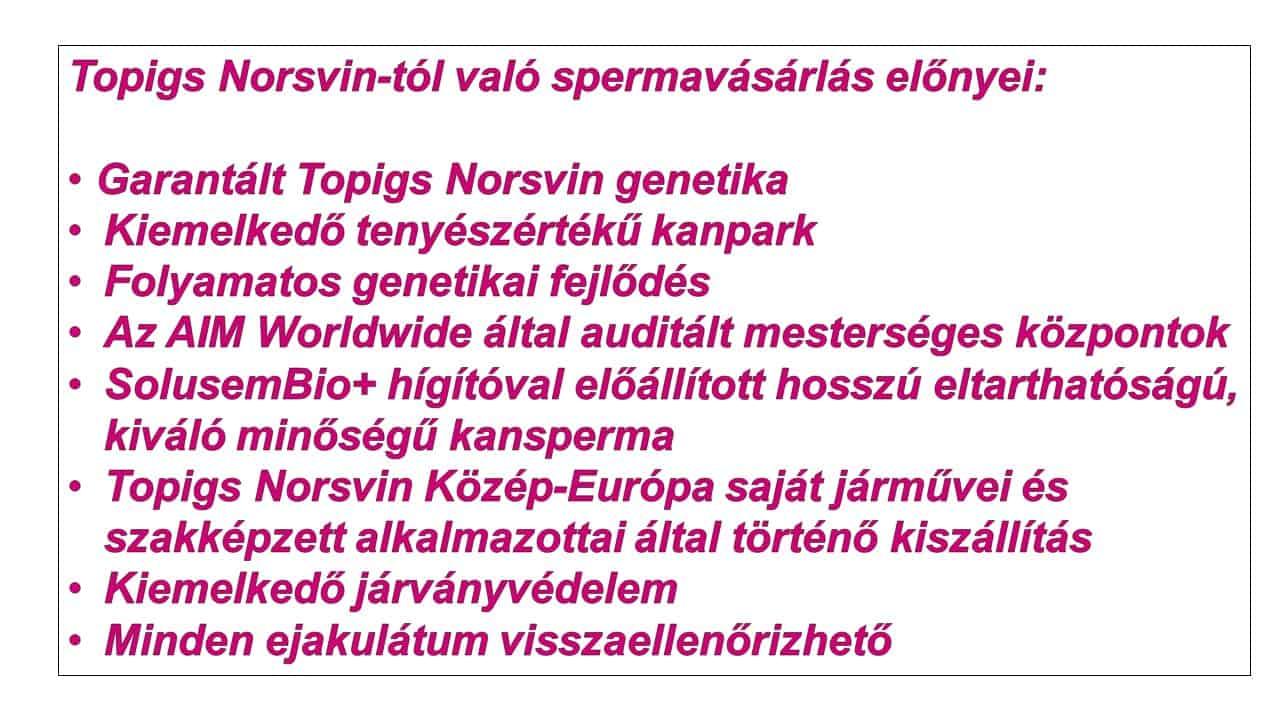A Topigs Norsvin Közép-Európától való spermavásárlás előnyei